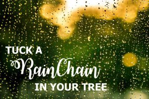 Dianne Bayley Writer and RainChains